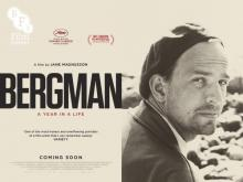 bergman_a_year_in_a_life