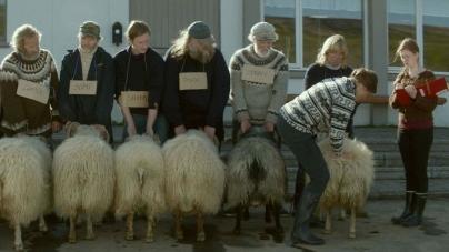 Rams Q&A with director Grímur Hákonarson