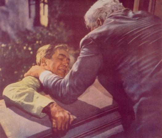 James Stewart, Raymond Burr
