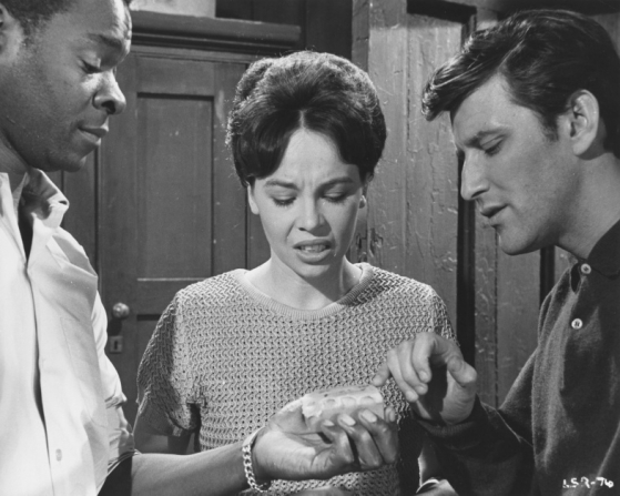Brock Peters, Leslie Caron, Tom Bell