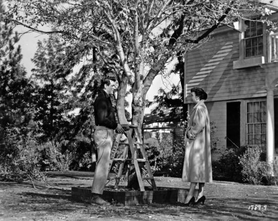 Rock Hudson, Jane Wyman