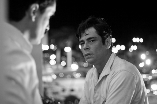 Demián Bichir, Benicio del Toro