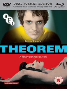 Buy Theorem on DVD and Blu Ray