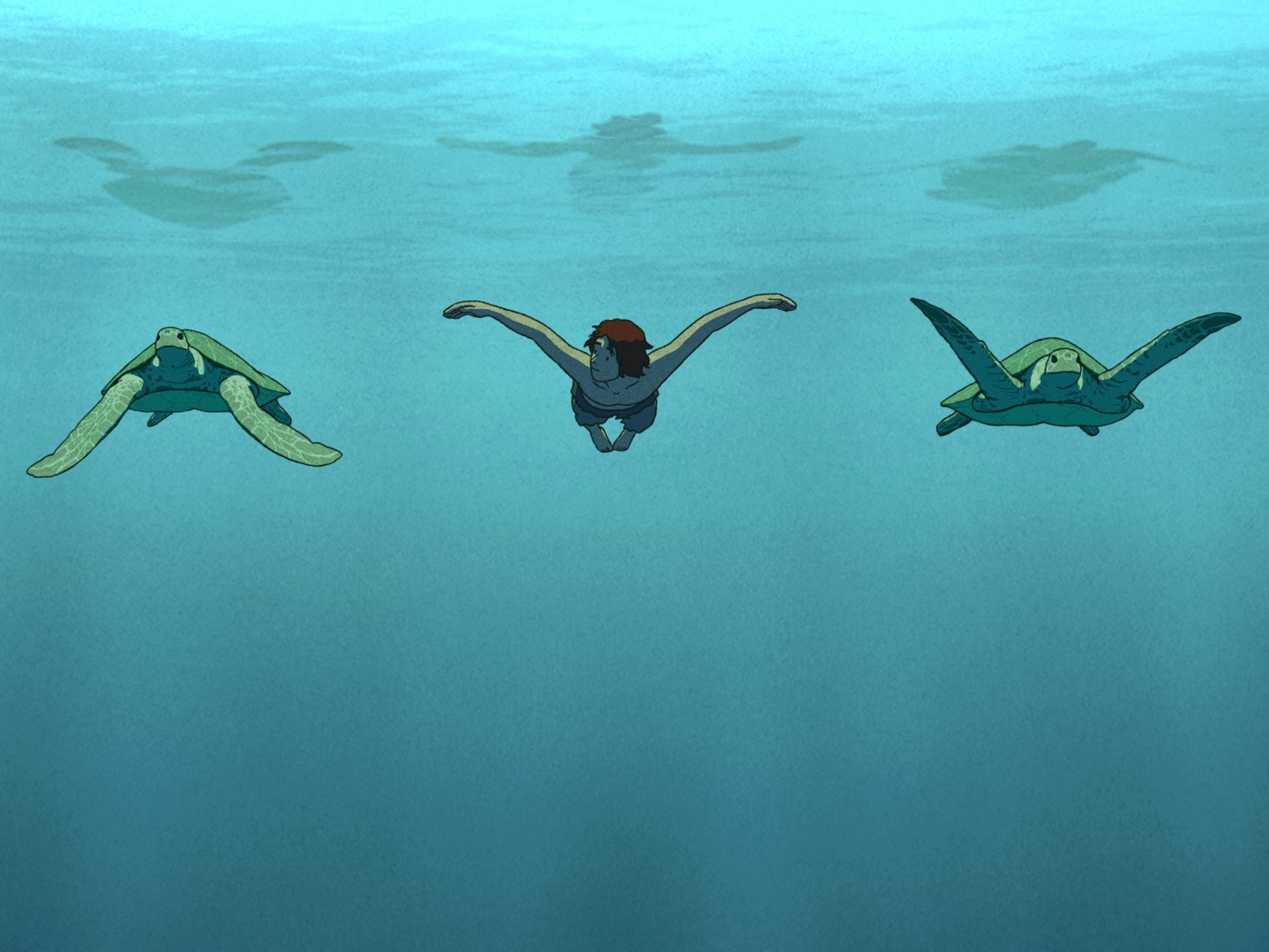 The Red Turtle Review A Dream Of A Desert Island Movie Sight Sound Bfi