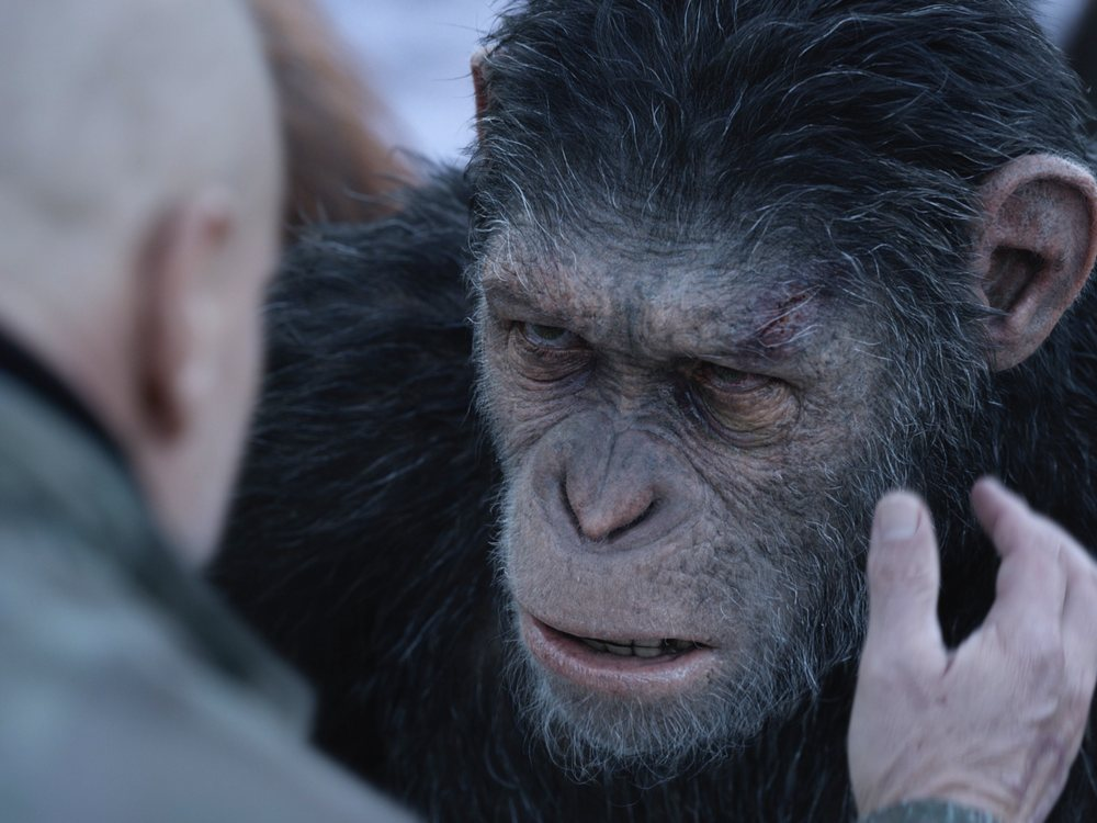 War For The Planet Of The Apes Review A Highly Evolved Cgi Enhanced Epic Sight Sound Bfi