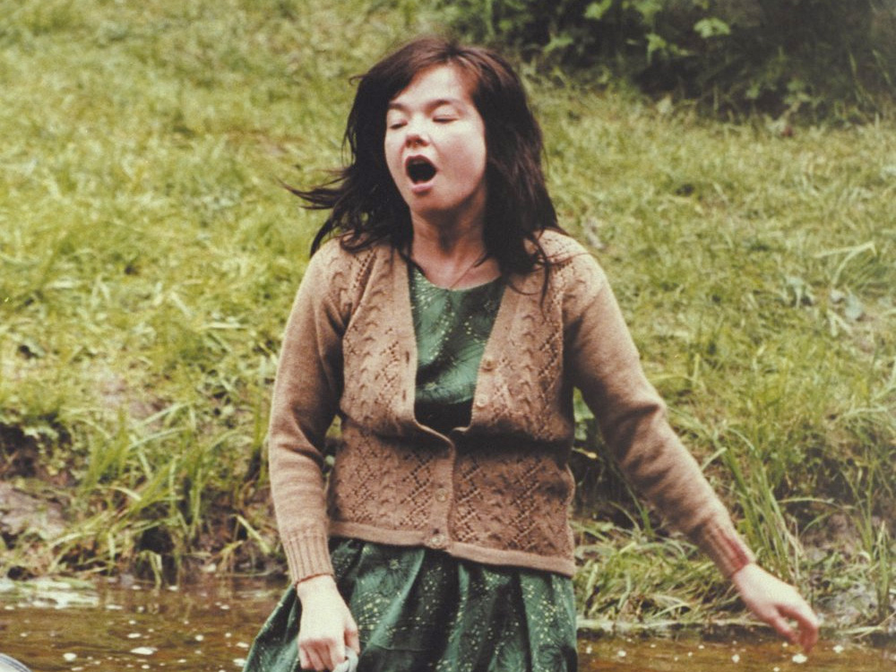 Bjork On Film Grimm Fairytales Whaling Missions And Cannes Glory Bfi