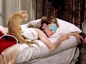 10 great films featuring cats - image
