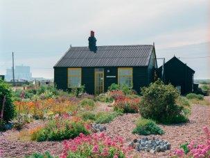 Prospect Cottage: Derek Jarman's wild garden - image