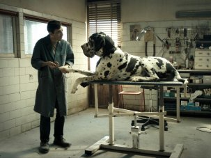 Matteo Garrone's critically acclaimed Dogman gets UK-wide preview at 62nd BFI London Film Festival