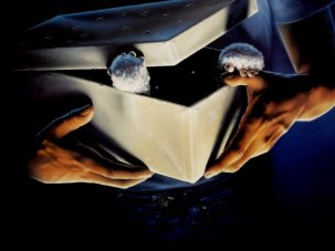 10 great Christmas horror films - image