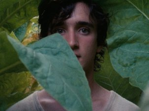 Magical realism in Alice Rohrwacher's Happy as Lazzaro - image