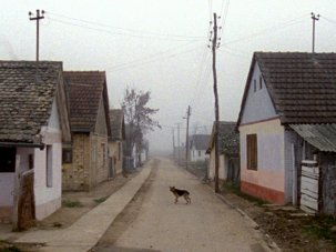 White river and black water: post-Yugoslav documentary festivals 2014 - image