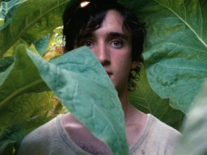Cannes first look: Happy as Lazzaro practises magic neorealism - image