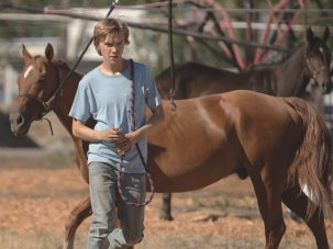 Venice review: Lean on Pete – Andrew Haigh's low-key road movie hits hard
