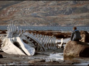 Leviathan review: Andrey Zvyagintsev has big fish to fry - image