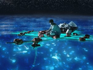 Film of the week: Life of Pi - image