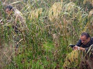 Film of the week: Marshland - image