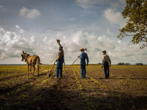 Mudbound review: families at war on home soil