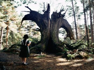 17 majestic moments in Pan's Labyrinth – 10th anniversary - image