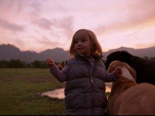 Film of the week: Post Tenebras Lux - image