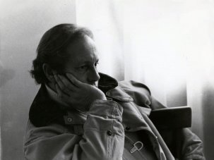 Nicolas Roeg obituary: one of British cinema's greatest visionaries - image