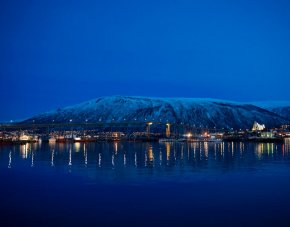 Films for film's sake: Tromsø 2015 - image