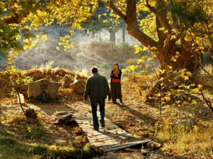 The Wild Pear Tree first look: Nuri Bilge Ceylan contemplates a restive rural homecoming
