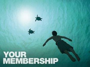 BFI Membership