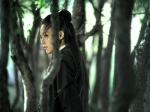 The Assassin – first look - image