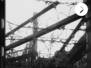 Video: Barbaric poetry – can we really film the Holocaust? - image