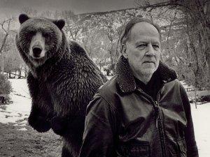 Herzog's ark - image