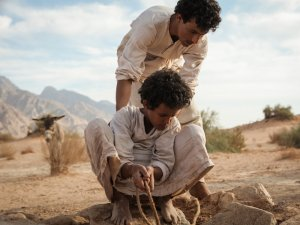 Theeb: a story of nature and cinema - image