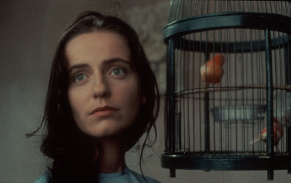 Abraham Valley (1993)