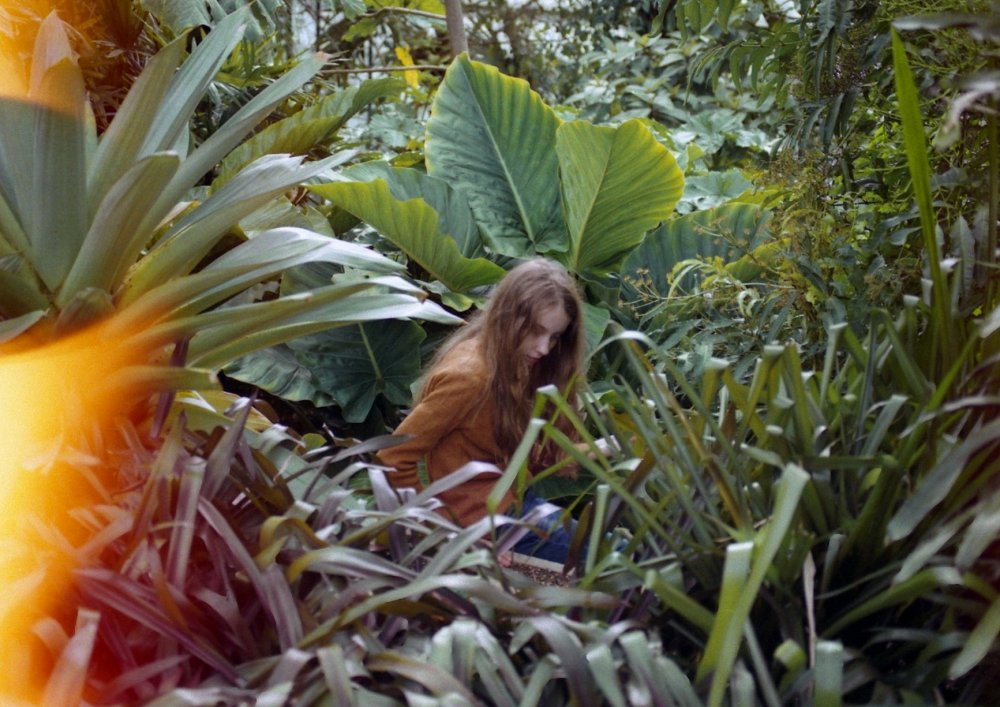 Adeline for Leaves (2014)