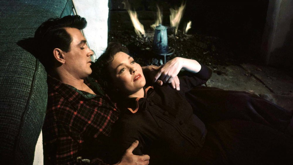 Rock Hudson as tree surgeon Ron Kirby and Jane Wyman as widow Cary Scott in Douglas Sirk's All That Heaven Allows (1955)