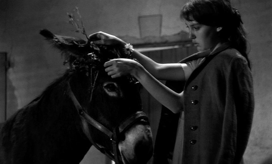 Yet in Bresson's cruel world, her fate echoes his own, forever at the mercy of the unscrupulous.