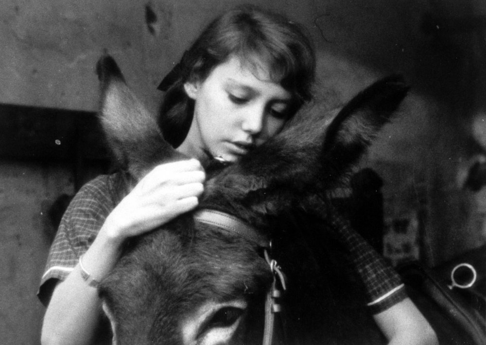 https://www.bfi.org.uk/sites/bfi.org.uk/files/styles/full/public/image/au-hasard-balthazar-1966-025-girl-donkey.jpg?itok=LJa6IeCa