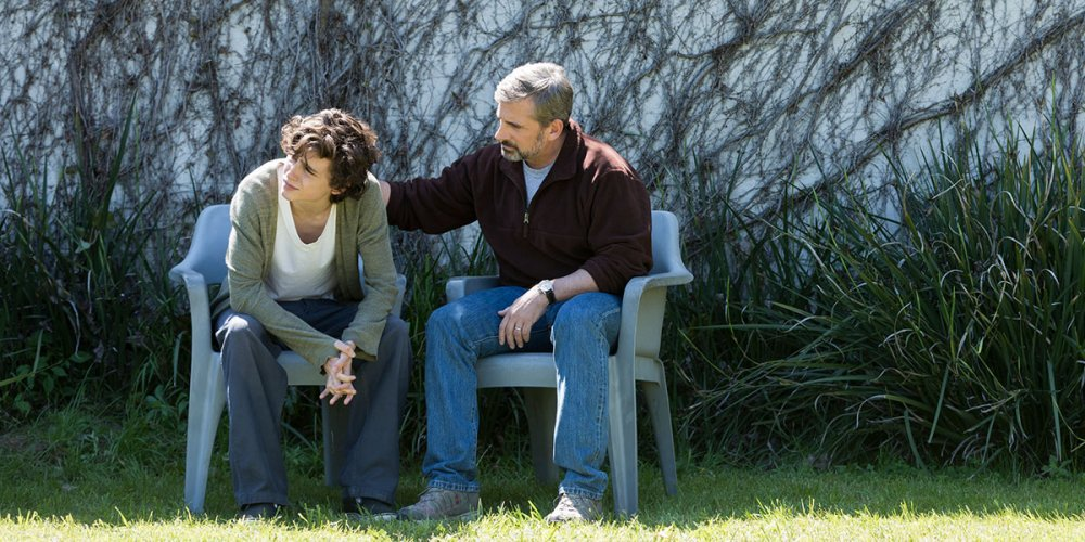 Timothée Chalamet as Nick Sheff and Steve Carell as David Sheff in Beautiful Boy