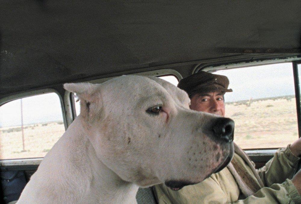 Bombón: El Perro (2004)