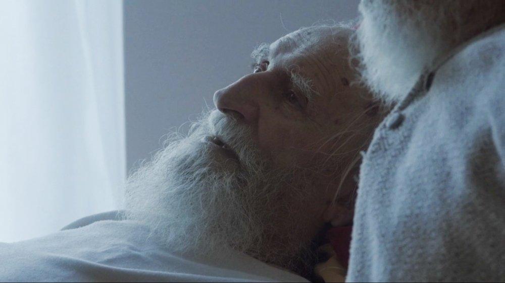 'The unspoken warmth of a lifelong bond' in Wojciech Staroń's Brothers