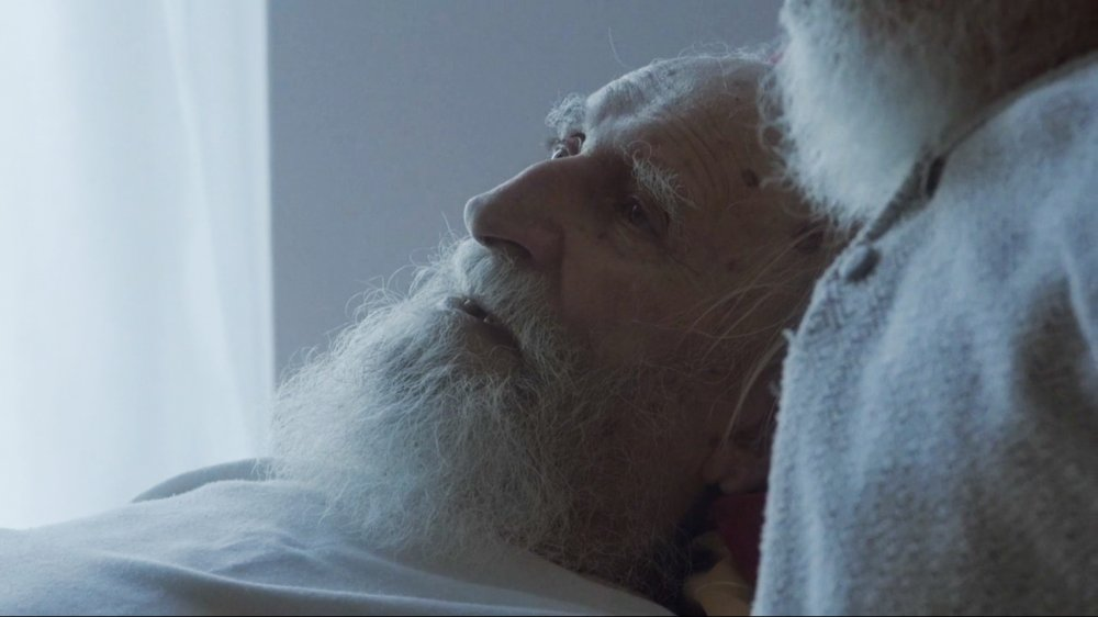 'The unspoken warmth of a lifelong bond' in Wojciech Staroń's Brothers