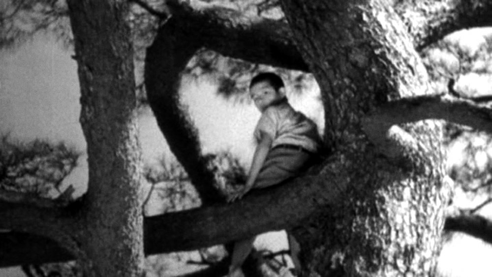 Children in the Wind (1937)