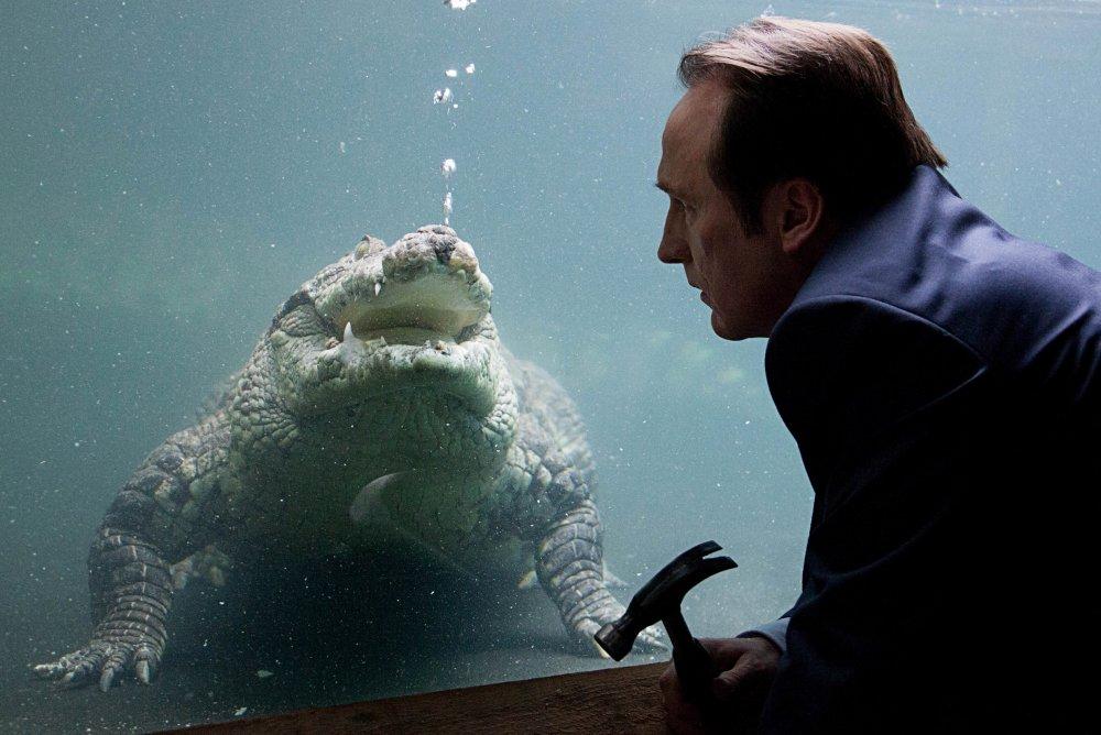 Crocodile (2014)