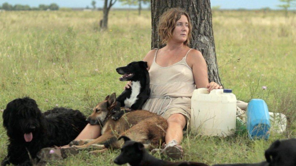 Unfussilly beguiling: Laura Citarella and Veronica Llinás's Dog Lady (La mujer de los perros).