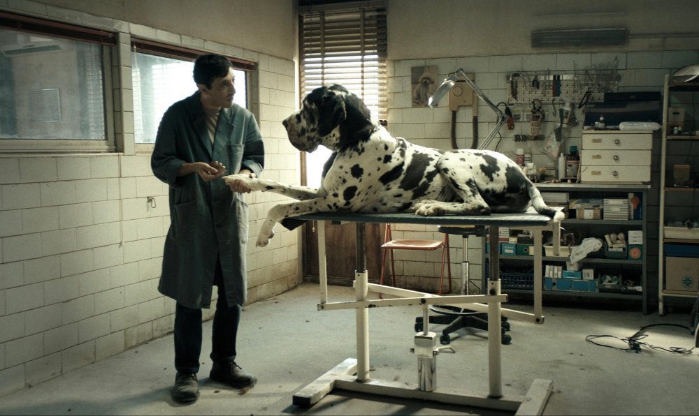 Marcello Fonte as Marcello in Dogman