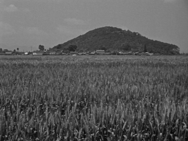 Shoji is, of course, only one of many lost soldiers. A marriage procession through a swaying wheat field suggests life continuing, while honouring the dead