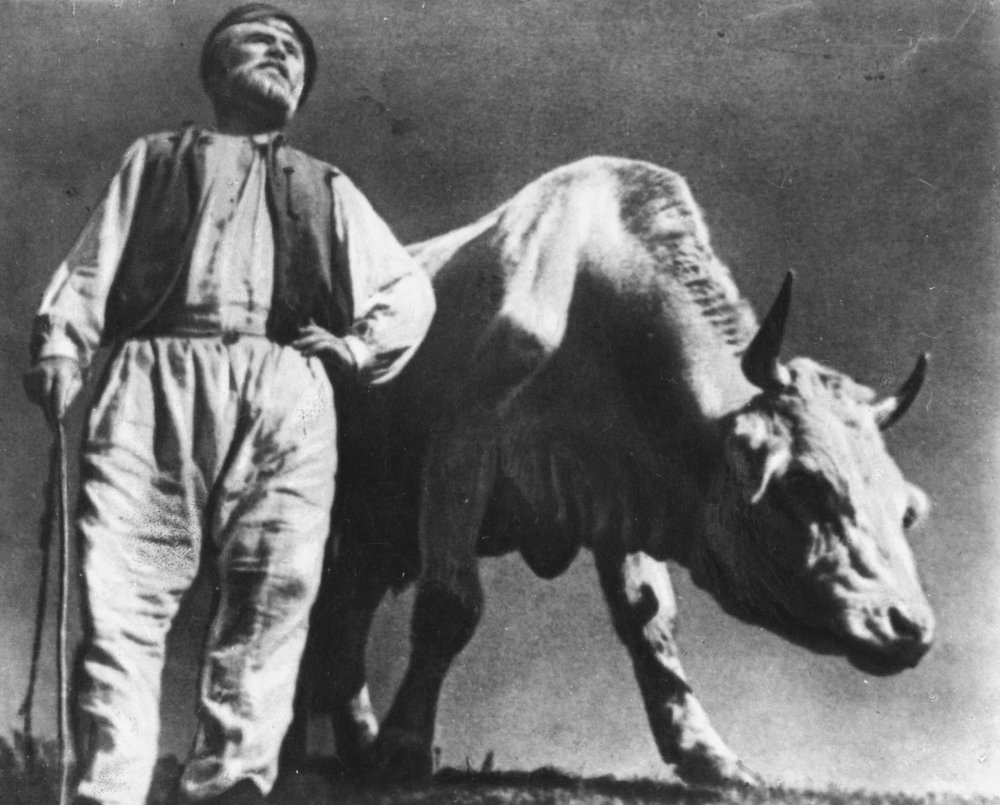 Doc or not? Alexander Dovzhenko's Earth