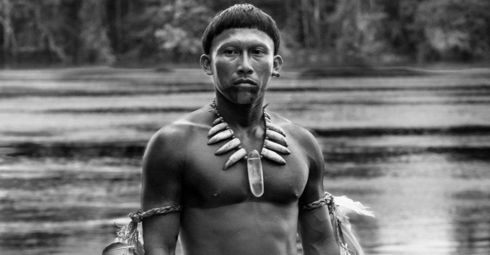 Embrace the Serpent (2015)