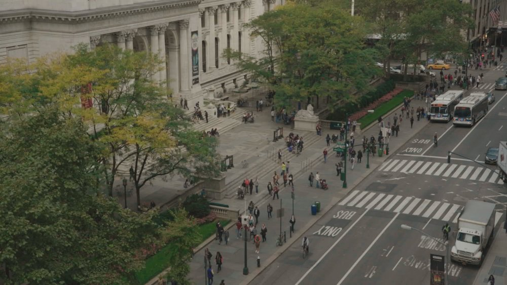 EX LIBRIS: the New York Public Library (2017)