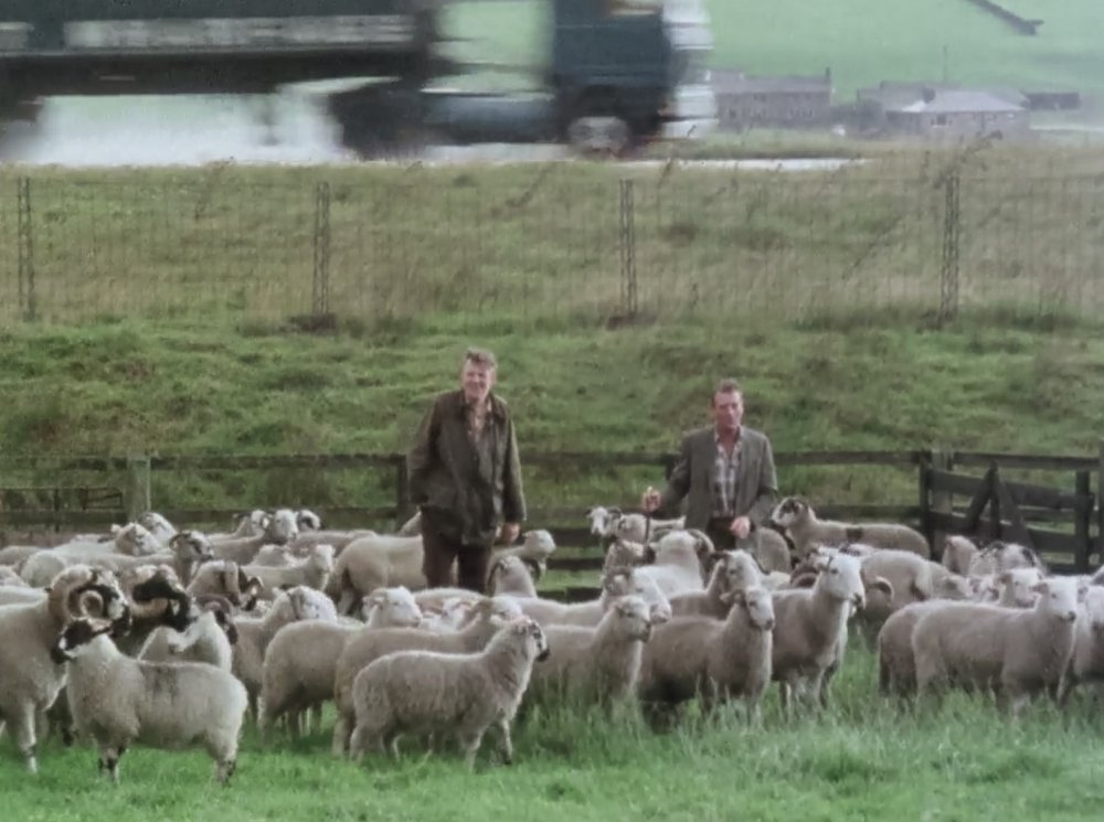 The Farm on the Motorway (1983)